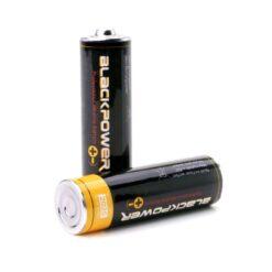 Secret Battery Type-AA Stash Double