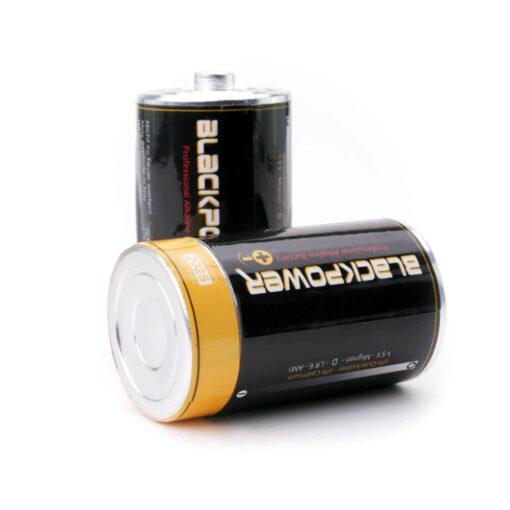 Secret Battery Type-D Stash Side