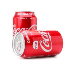 Coca Cola Secret Storage Can Double